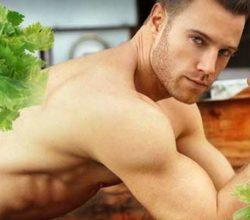 Полезные свойства сельдерея для мужчин