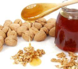 Грецкий орех с медом: польза для мужчин и потенции